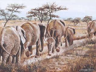 elephants walkin painting