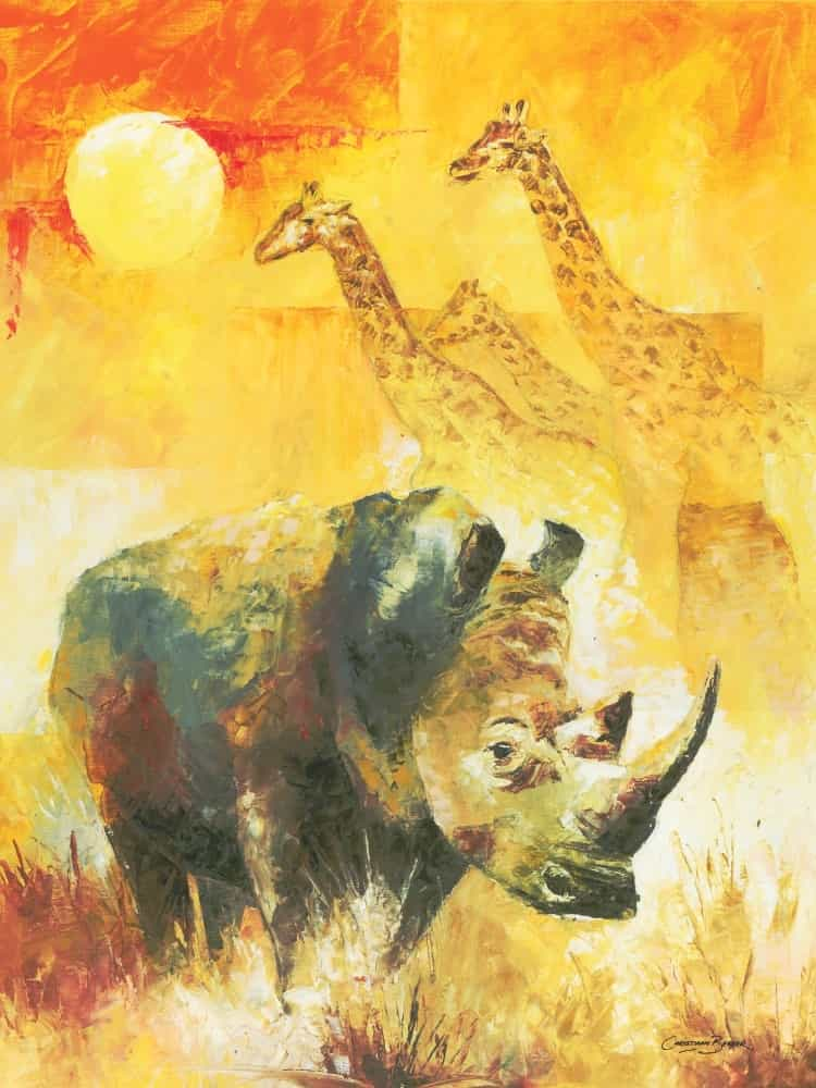 White Rhino Art Prints
